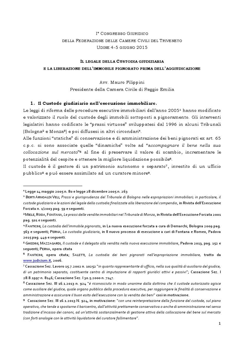 Il legale della custodia giudiziaria - Udine 5 giugno 2015